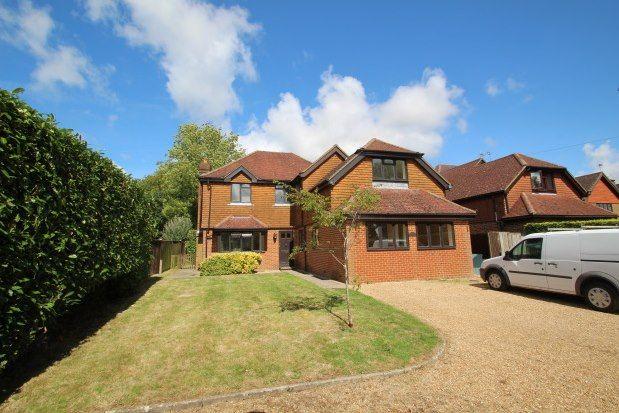 Thumbnail Property to rent in Langham Road, Robertsbridge