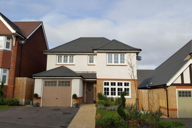 Thumbnail Property to rent in Goldsland Walk, Wenvoe, Cardiff