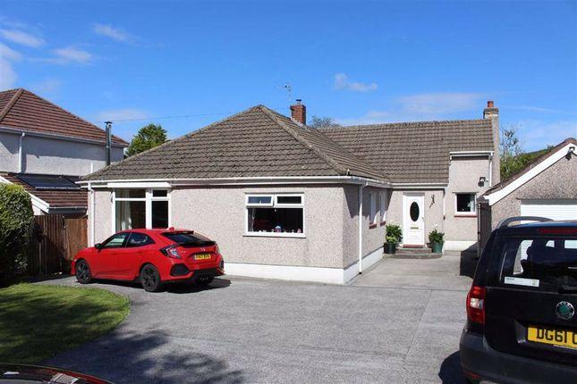 Thumbnail Detached bungalow for sale in Garrod Avenue, Dunvant, Swansea