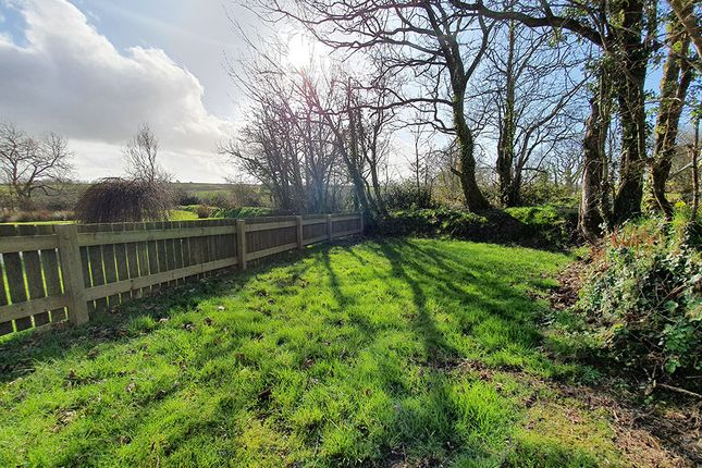 Garden of Boyton, Launceston PL15