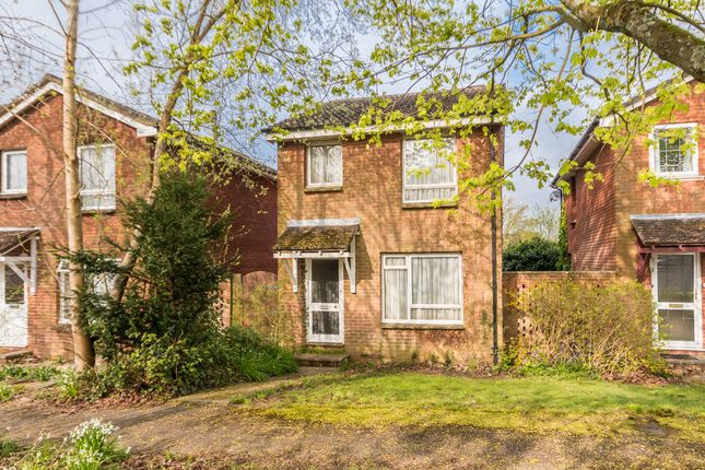 Thumbnail Detached house for sale in The Mount, Ringwood