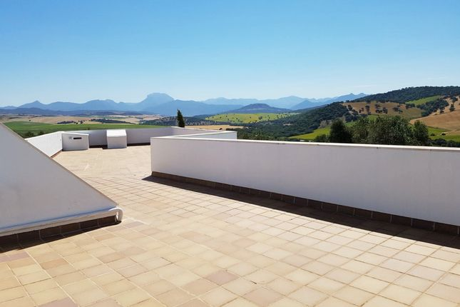 Extensive Terrace And Views