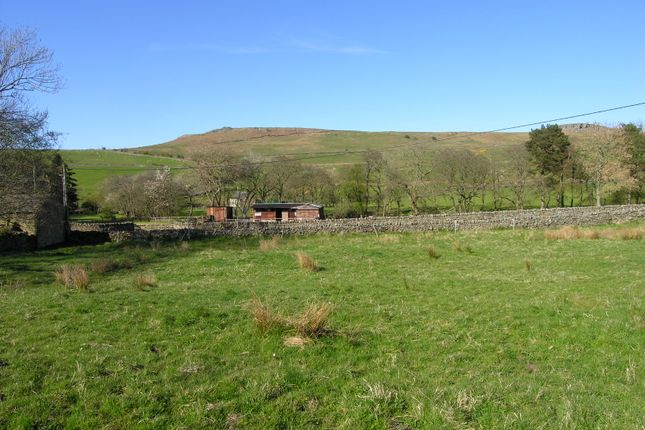Thumbnail Land for sale in East Woodburn, Hexham