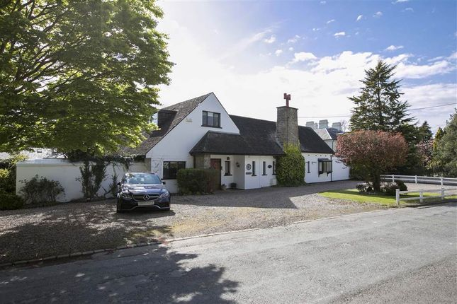 Thumbnail Detached house to rent in 30, Cultra Avenue, Holywood