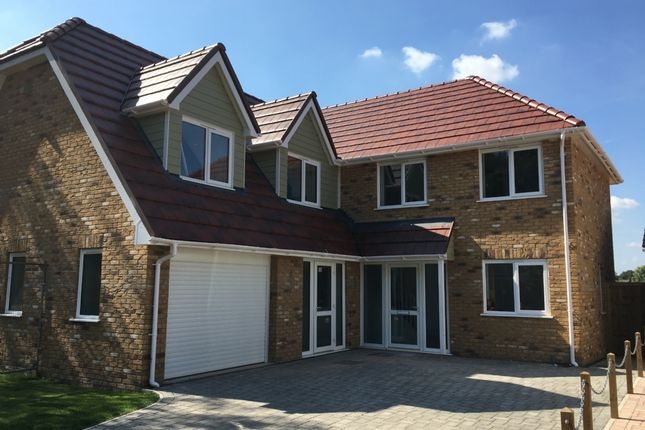 Thumbnail Detached house for sale in Spire View, Jobs Lane, March