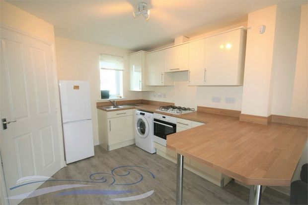 Thumbnail Semi-detached house to rent in Morfa Road, Swansea