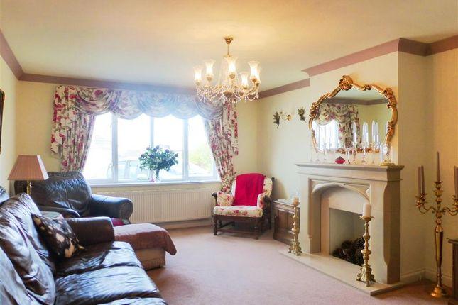 Thumbnail Bungalow to rent in Miranda Road, Preston, Paignton
