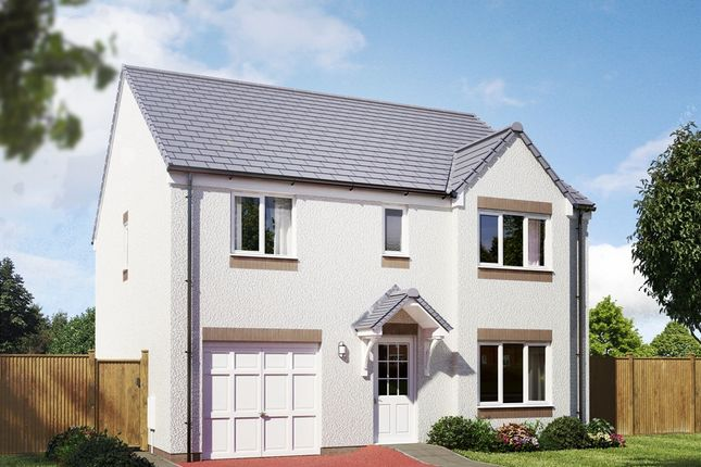 "Thumbnail Detached house for sale in ""The Whithorn"" at Hamilton Road, Larbert"