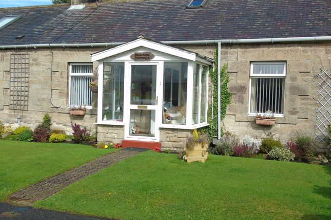 Thumbnail Bungalow for sale in Westwood, Hexham