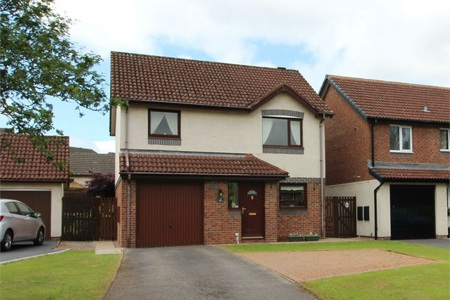 Thumbnail Detached house for sale in Meadow Croft, Penrith, Cumbria