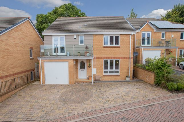 Thumbnail Detached house for sale in Drake Avenue, Teignmouth