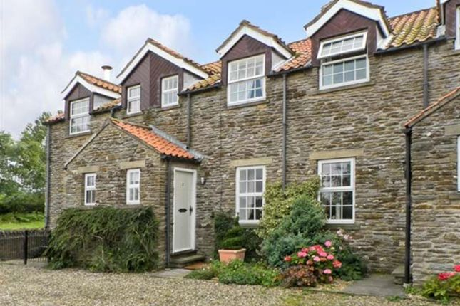 Thumbnail Terraced house to rent in Flat Top Cottages, Terrington, York