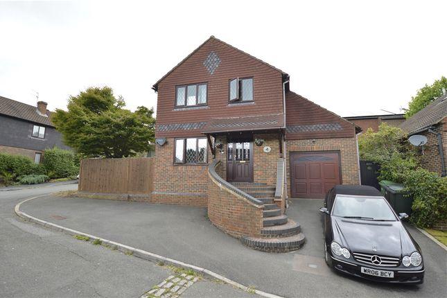 Thumbnail Detached house for sale in Raven Court, Juniper Close, St Leonards