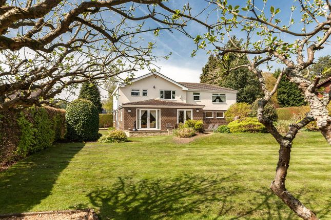 Thumbnail Detached house for sale in Silver Birches, Sandy Bank, Riding Mill, Northumberland