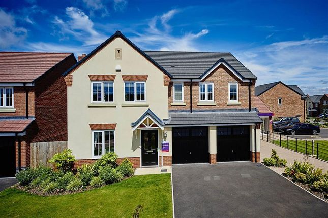 Thumbnail Detached house for sale in Murrell Way, Shrewsbury