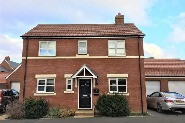 Thumbnail Detached house to rent in 3, Seacole Way, Copthorne, Shrewsbury, Shropshire