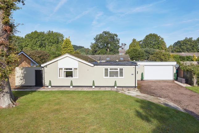 Thumbnail Detached bungalow for sale in Anglesey Place, Great Barton, Bury St. Edmunds