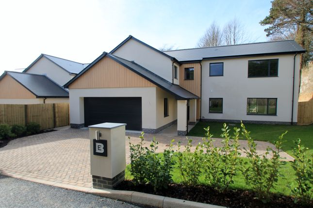Thumbnail Detached house for sale in Esthwaite Lane, Derriford, Plymouth