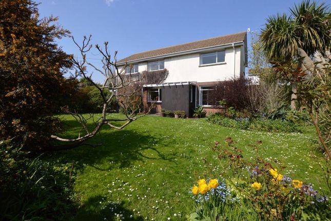 Thumbnail Detached house for sale in School Lane, Shaldon, Devon
