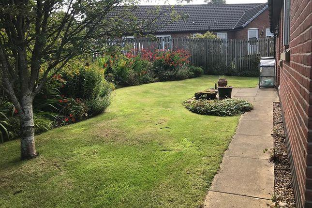 Garden of Jocks Hill, Brampton CA8