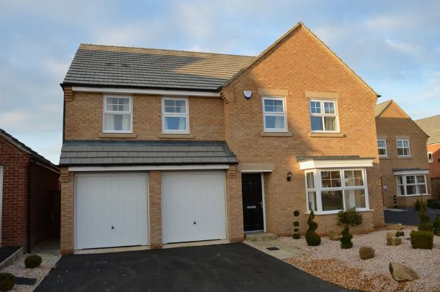 Thumbnail Detached house to rent in Spinney Close, Moulton, Northampton