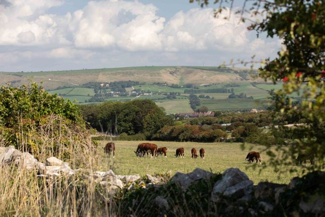 Purbeck Hills of The Brook, Prospect Way, Swanage BH19