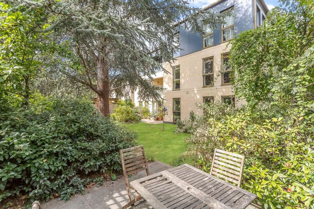 Communal Garden of Lexington House, 10 Long Road, Cambridge CB2