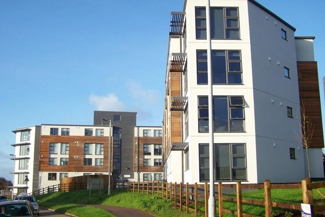 Thumbnail Flat to rent in Plymbridge Lane, Plymouth