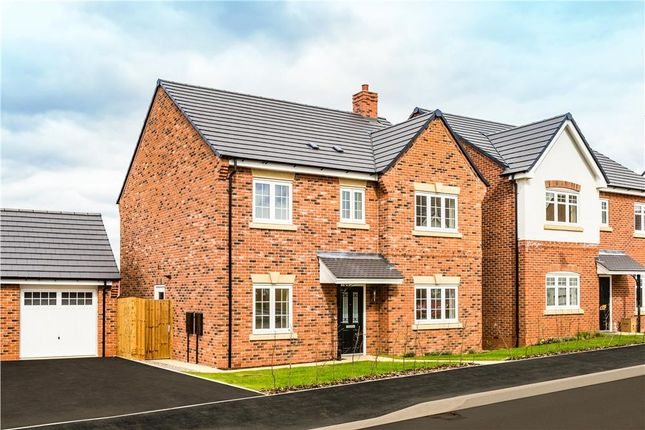 "Thumbnail Detached house for sale in ""Foxley"" at Warwick Road, Kibworth, Leicester"