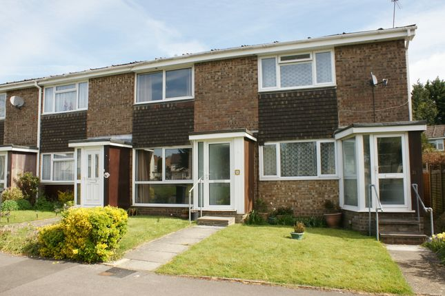 Thumbnail Terraced house to rent in Plovers Way, Alton