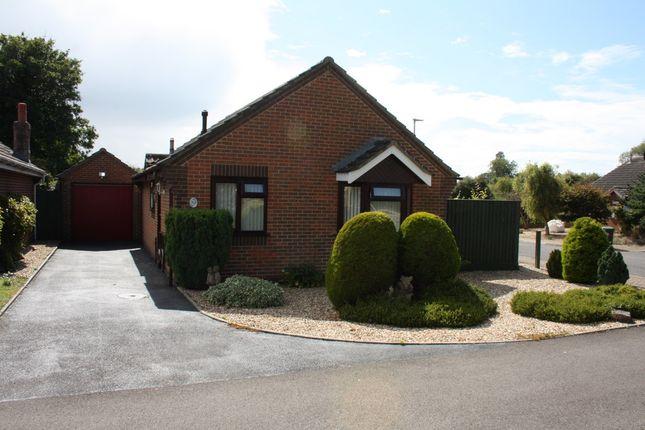Thumbnail Detached bungalow for sale in Elm Close, Sturminster Newton