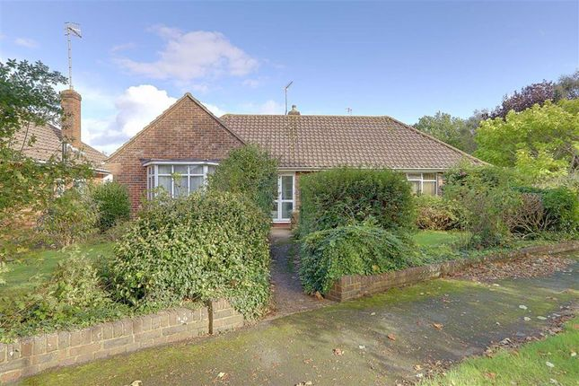 Thumbnail Detached bungalow for sale in Glynde Avenue, Worthing, West Sussex
