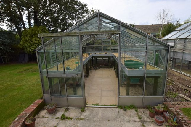 Greenhouse of Pevensey Park Road, Westham BN24