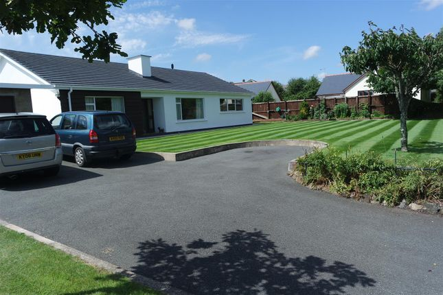 Thumbnail Bungalow for sale in Pill Road, Hook, Haverfordwest