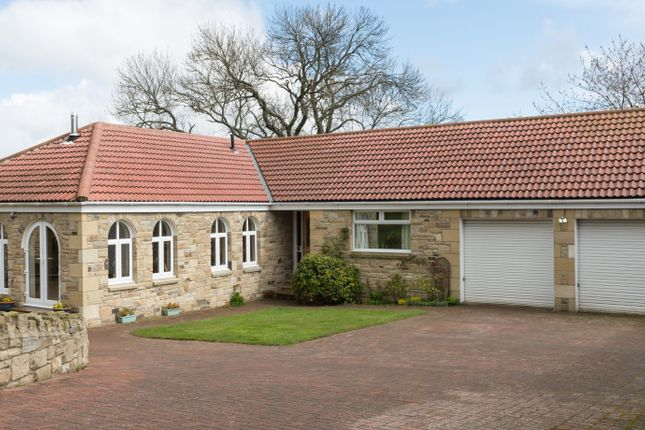 Thumbnail Detached bungalow for sale in Moorlands, Newton-On-The-Moor, Morpeth, Northumberland