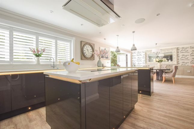 Thumbnail Detached house for sale in Brookdale, St. Leonards-On-Sea