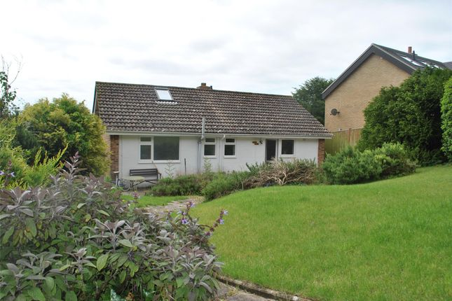 Thumbnail Detached bungalow to rent in Marcia Close, Eastbourne, East Sussex