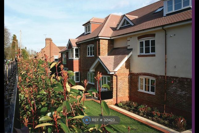 Thumbnail Flat to rent in Chesham Heights, Kingswood, Tadworth