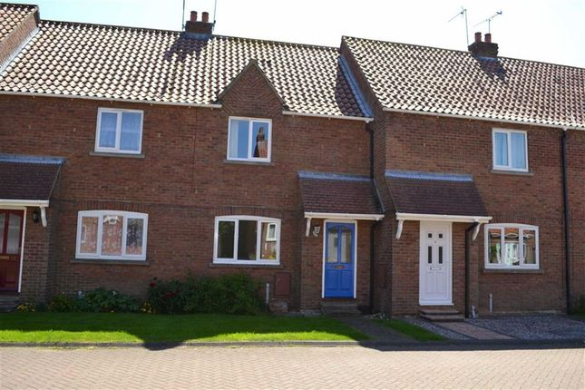 Thumbnail Terraced house to rent in Boardman Park, Brandesburton, East Yorkshire