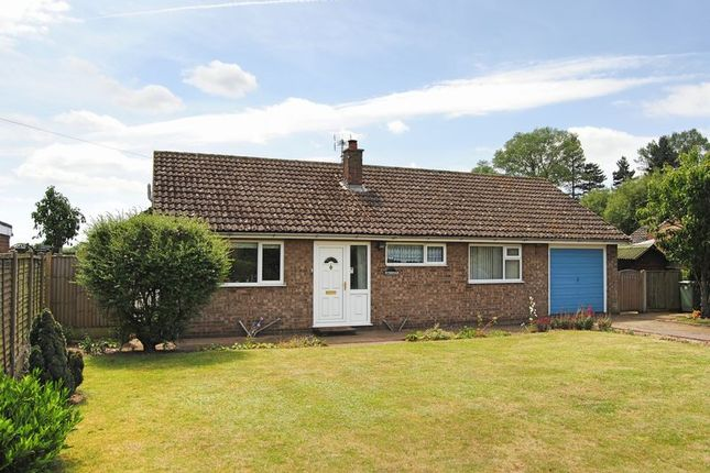 Thumbnail Detached bungalow to rent in Pinfold Lane, Marston, Grantham