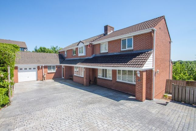 Thumbnail Detached house for sale in The Heathers, Woolwell, Plymouth