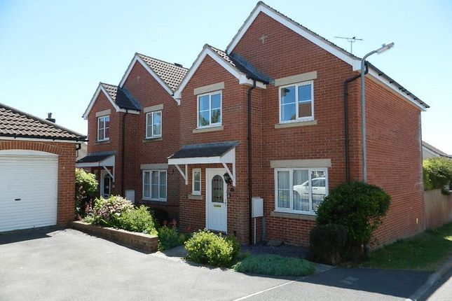 Thumbnail Detached house to rent in Mervyn Ball Close, Chard
