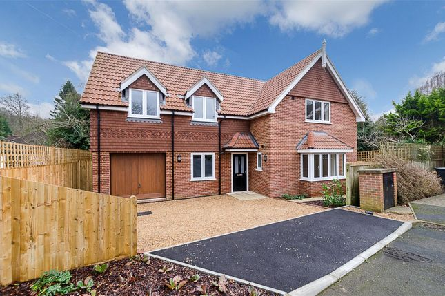 Thumbnail Detached house for sale in Mapleleaf Close, South Croydon, Surrey