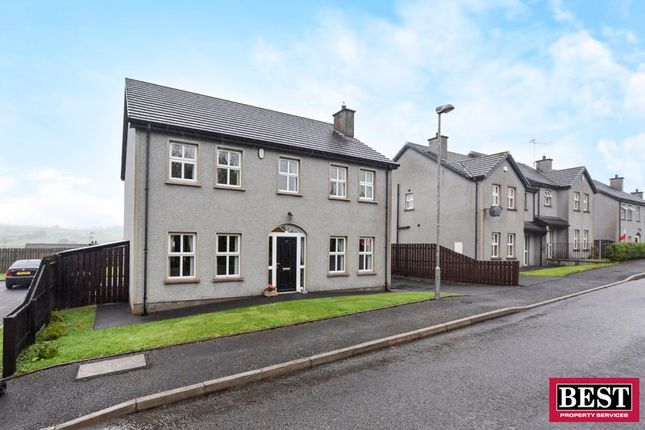 Thumbnail Detached house for sale in Kildrum, Galbally, Dungannon