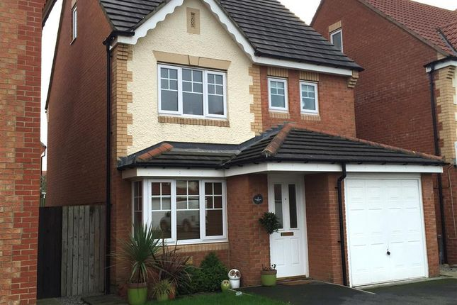 Thumbnail Detached house to rent in Cornflower Close, Bishop Cuthbert, Hartlepool