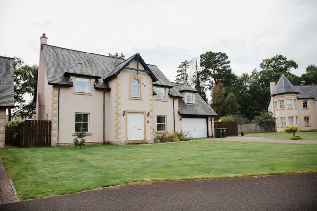 Thumbnail Detached house to rent in Druids Park, Murthly, Perth