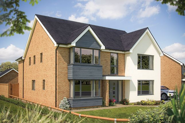 "Thumbnail Detached house for sale in ""The Ascot"" at Fields Road, Wootton, Bedford"