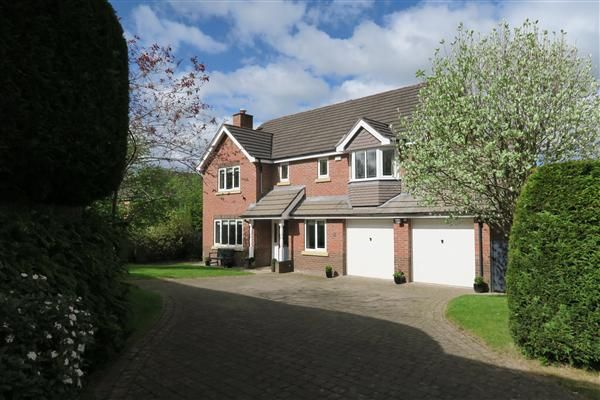 Thumbnail Detached house for sale in Betchworth Way, Macclesfield
