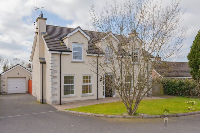Thumbnail Detached house to rent in Saintfield Road, Carryduff