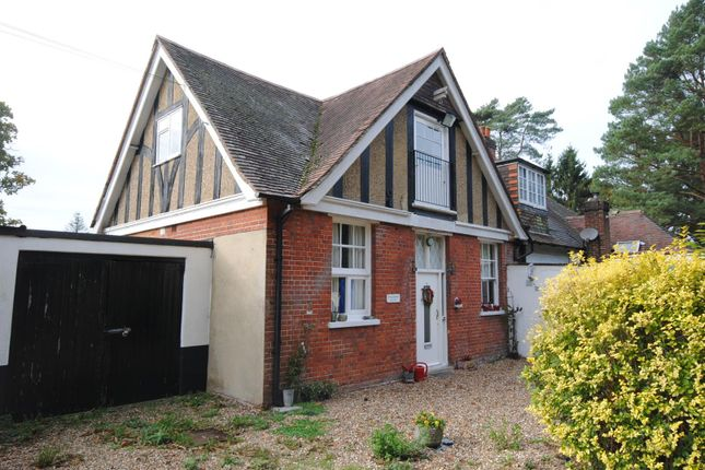 Thumbnail Bungalow to rent in Westwood Road, Windlesham
